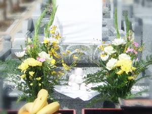 開眼式のお花・色花