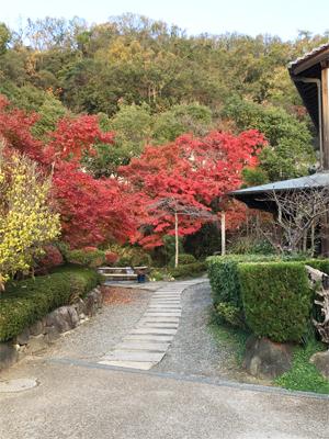 野崎観音 文字彫刻 紅葉