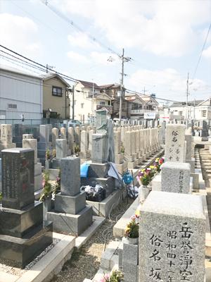 東大阪市高倉墓地でお墓の文字彫り