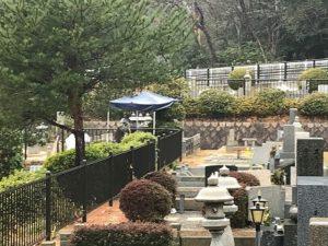 芦屋市霊園で追加彫刻