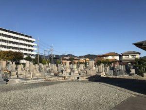 加茂墓地公園で追加彫り