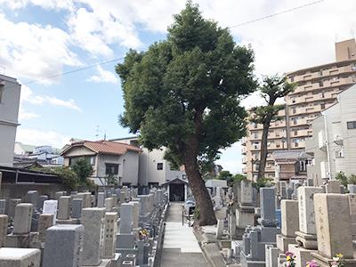 大阪市旭区の森小路墓地で墓石への文字彫刻